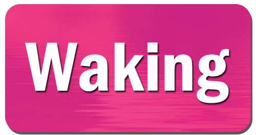 AR+ Waking